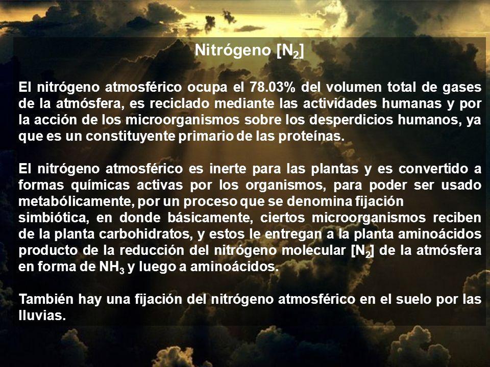 Nitrógeno [N2]
